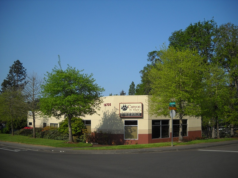 Canyon Pet Hospital