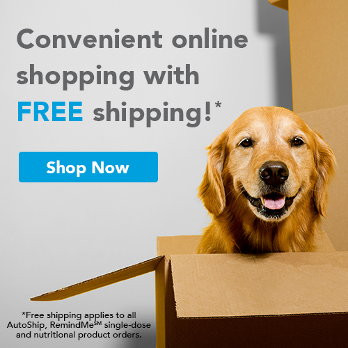 home delivery of pet medications and prescriptions
